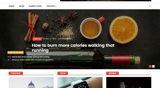NewsMag-lite-magazine-teması